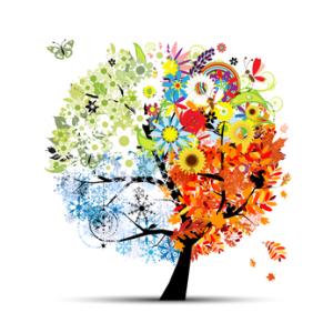 Pénzügyi fa: pénzügyi egyensúly, életperiódusok változása